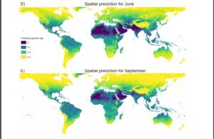Il clima mite della Sicilia ha frenato i contagi lo dice la scienza