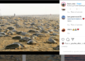 india quarantena tartarughe nidificano